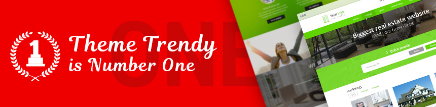 terndy_wordpress_theme