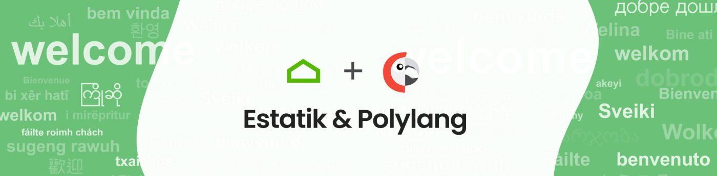 estatik_polylang_translation